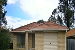 111 Brooklands Cct, Forest Lake, Qld 4078