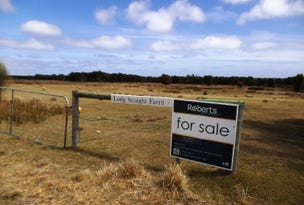 Lot 1, 634 Palana Road, Blue Rocks, Flinders Island, Tas 7255