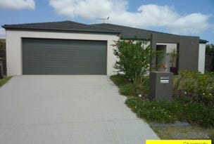 1 Waterlily Circuit, Carseldine, Qld 4034
