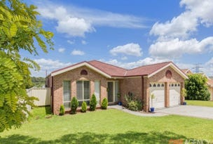 19 Eucalyptus Circuit, Warabrook, NSW 2304