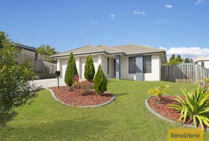 254 Universal Street, Oxenford, Qld 4210