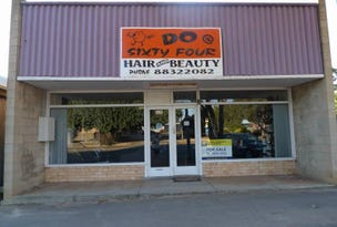 64 Robert Street, Maitland, SA 5573