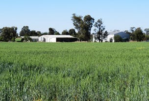 QUALITY SMALL FARM, Tara, Qld 4421