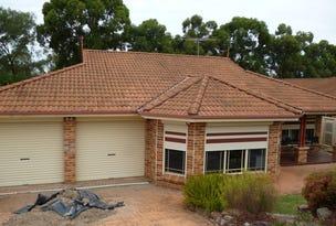 35 GABRIELA AVENUE, Cecil Hills, NSW 2171