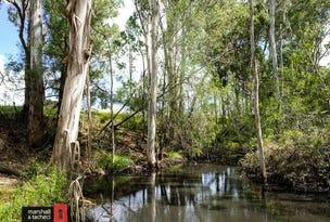 9859 Princes Highway, Cobargo, NSW 2550