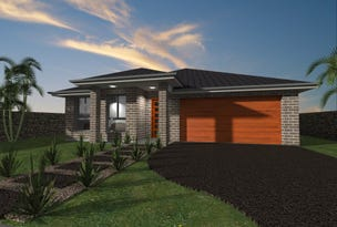 Lot 229 Vine Street Harvest Estate, Chisholm, NSW 2322
