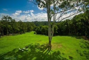 575 Binna Burra Road, Binna Burra, NSW 2479