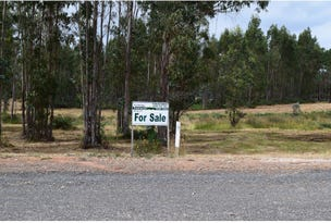 Lot 39 Woylie Road, Northcliffe, WA 6262