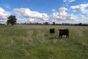 PORTION 143, CAMP RD, Cowra, NSW 2794