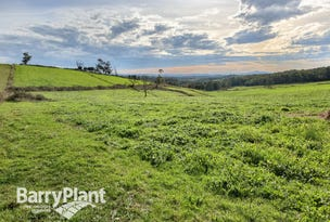 Lot 1 Ure Road, Gembrook, Vic 3783