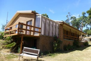 28 Little Village Lane, Somerset, Tas 7322