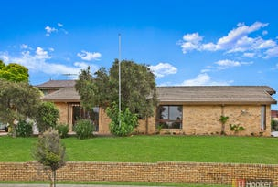 1 Olwen Place, Quakers Hill, NSW 2763