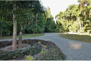 116 Hickory Road, Cow Bay, Daintree, Qld 4873