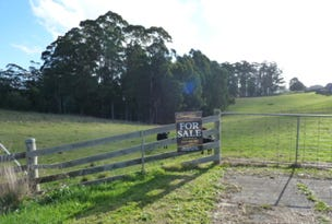 Lot 3, Oldina Road, Wynyard, Tas 7325
