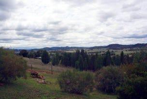 507 Dripstone Road Dripstone via, Wellington, NSW 2820