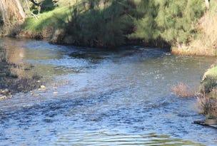 Hunter Road, Scone, NSW 2337