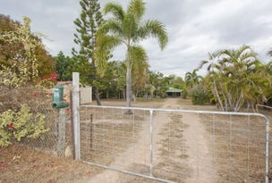 328 Forestry Road, Bluewater Park, Qld 4818