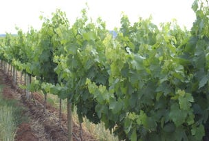 Yenda Vineyards, Griffith NSW, Griffith, NSW 2680