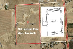 Lot 161 Halstead Road West Two Wells Via, Lewiston, SA 5501