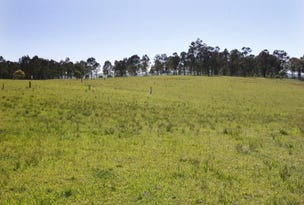 Lot 22 Waterview Road, Clarence Town, NSW 2321