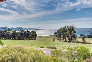 180 Tasman Highway, Bicheno, Tas 7215