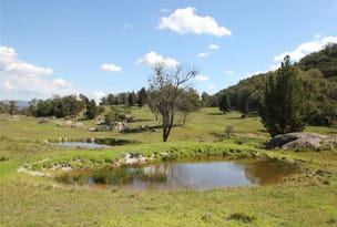 Lot 1, 306 Geyers Road, Tenterfield, NSW 2372