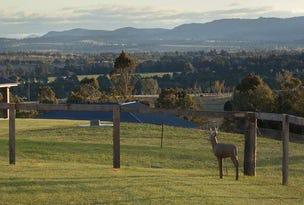 7 Lighthorse Parade, Scone, NSW 2337
