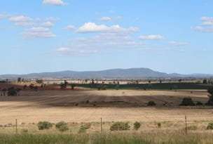 1506 Newell Highway, Forbes, NSW 2871