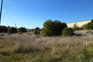 Lot 11&12 Wellington St, Molong, NSW 2866