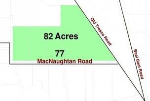 77 MacNaughtan Road Tresco via, Lake Boga, Vic 3584