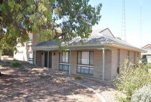 3  Heinemann Crescent, Waikerie, SA 5330