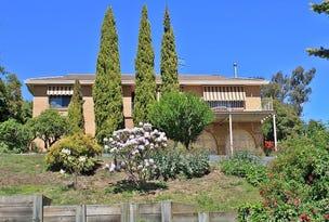 14 Albury Close, Tumbarumba, NSW 2653