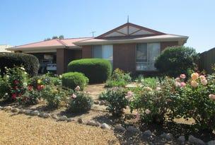17 Gardiner Street, Wellington East, SA 5259