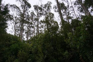 Lot 1A Blairs Road, Mole Creek, Tas 7304