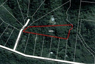 22 Forest Close, Daintree, Qld 4873