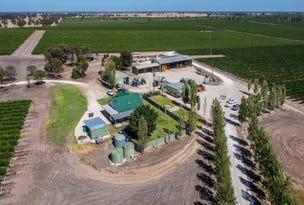 Howcroft 1 & 2 Vineyards, Mundulla, SA 5270