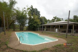 80 Paradise Palm Drive, Tully Heads, Qld 4854