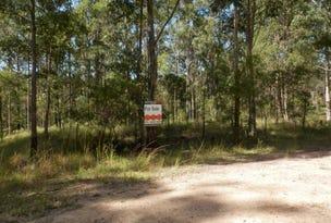 Lot 213 Long Gully Rd, Drake, NSW 2469