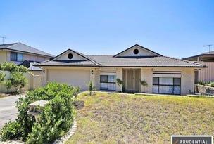 93 Maryfields Drive, Blair Athol, NSW 2560