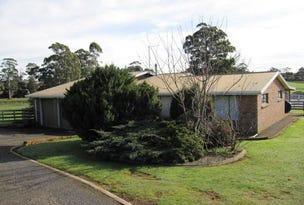 822 South Road, Penguin, Tas 7316