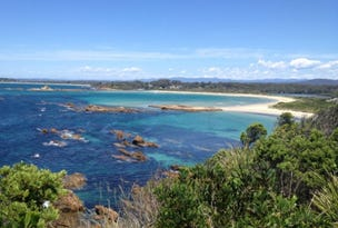 Lot 131, 36 John Penn Drive, Batemans Bay, NSW 2536