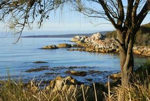 15 Seaton Cove Road, Binalong Bay, Tas 7216