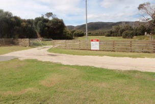 1106 Palana Road, Flinders Island, Tas 7255