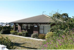 102 St Helens Point Road, Stieglitz, Tas 7216