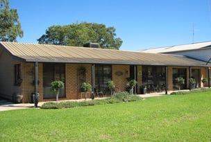 105 Irrigation Way, Narrandera, NSW 2700
