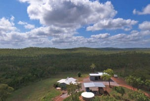lot 139 Heather Lagoon Road, Lake Bennett, NT 0822