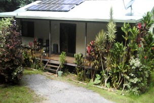 210 White Beech Road, Daintree, Qld 4873