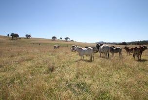 91 Kangaroo Creek Road, Wallabadah, NSW 2343