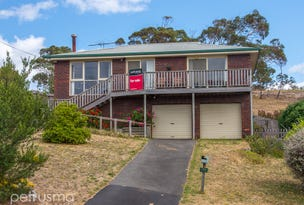 160 Bally Park Road, Dodges Ferry, Tas 7173