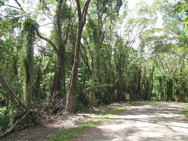 36 Ronald Road Forest Creek, Daintree, Qld 4873